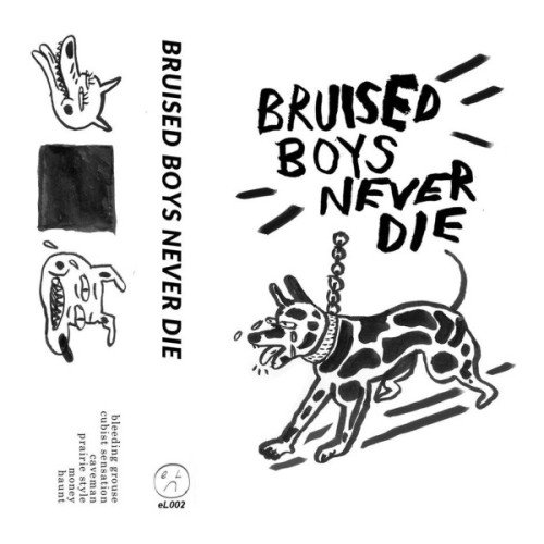 Album-art-for-Bruised-Boys-Never-Die-by-Bruised