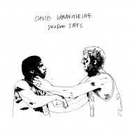 Album-art-for-Shadow-Slides-by-David-Vandervelde