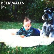 Album-art-for-joy-by-Beta-Males