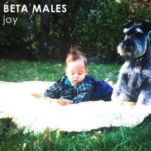 Album-art-for-joy-by-Beta-Males
