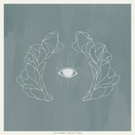 Album-art-for-Vestiges-&-Claws-by-Jose-Gonzalez