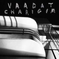 Album-art-for-Sinking-As-A-Stone-by-Vaadat-Charigim